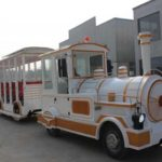 Amusement Park Trackless and Track Train for Sale