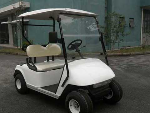 Two Seat Golf Carts for Sale In Pakistan